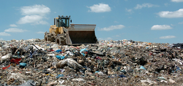 Terminator Pest Control Waste Sites and Landfills